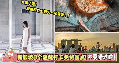 不要再去看鱼尾狮了啦!新加坡8个隐藏打卡免费景点! 不要错过啦!