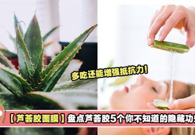 【芦荟胶能够滋润头发!】盘点芦荟胶5个你不知道的隐藏功效!