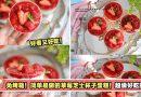 免烤箱!简单易做的草莓芝士杯子蛋糕!超级好吃的~